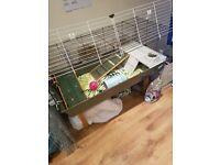 Ferplast 120 guinea pig/rabbit indoor hutch