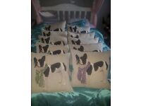 New and good quality dog cushions £5 each