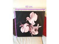 Modern pink orchid picture