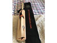 Norfolk cricket players bat