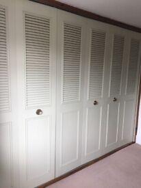 Vintage wardrobe doors