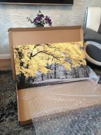 Canvas Wall Art plus free 2 free cushions and free Mirrored cube