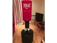 Everlast Free Standing Punch Bag