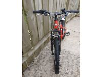 Boys 20in mountain bike excellent condition