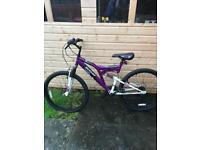 Adult mountain bike (Dunlop)