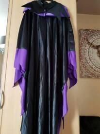 Woman's fancy dress costume