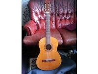 1970s Grand Suzuki Acoustic Guitar
