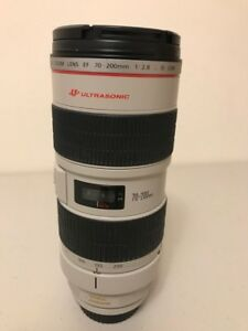 Canon EF 70-200mm f/2.8L USM Lens (with lense hood)