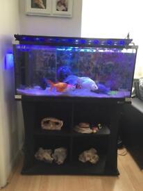 3ft Wide Aqua one Clean Fish tank & Stand - Black