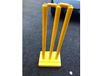 Junior All Weather Cricket Wicket