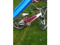 Girls mountain bike. Lovely condition