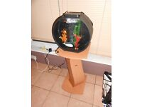 Aquarium and Stand with LED lighting Heater & Pump/Filter