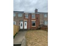 Lovely 3 bed with garden available immediately.
