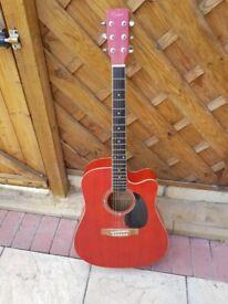 full size coban acustic guitar pulse case