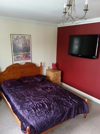 last 2 rooms to rent in executive house in Watford
