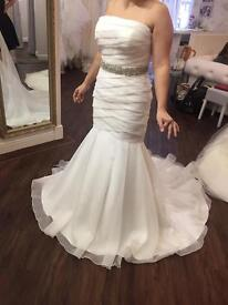 BRAND NEW ivory fishtail/mermaid wedding dress