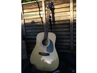 Peavey acoustic guitar