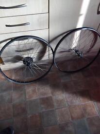 Mountain bike wheels with Quando high performance QR hubs