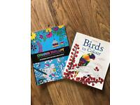 Two brand new adult colouring books