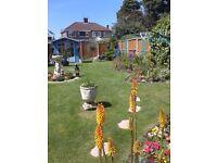 Gardener one off or fortnightly visits.