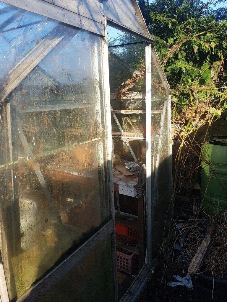 8x6 Greenhouse In Consett County Durham Gumtree