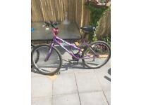 His and hers mountain bikes £50 the pair