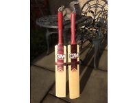 Two GM cricket bats