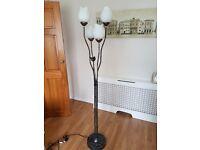 Unusual tall floor lamp