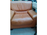 Free to uplift: Leather Armchair