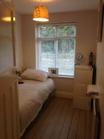 Two rooms to rent in Bearwood