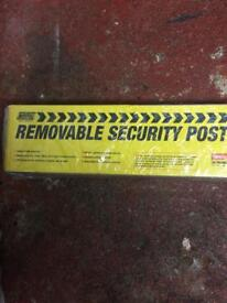 Removable security post