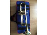 Nearly new trumpet and smart carry case for sale