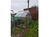 6 x 6 greenhouse