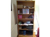 Large bookshelves shelves