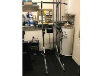 Pull up station/romain chair can be used for pull ups and ab work