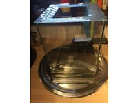 🐠fishey🐠small fluval chi fish tank/aquarium light/filter Dundee/deliver 🐠fishey🐠