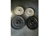 30 kg standard cast iron weights Gold's Gym