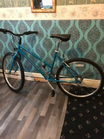 Blue bike 26in