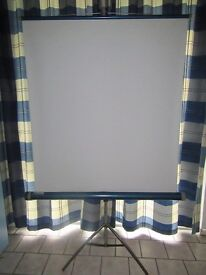 Vintage Bell and Howell Projector Screen
