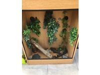 £30 if gone today!! Large lizard vivarium