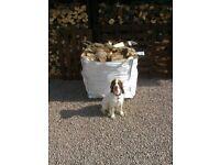 3 YEAR SEASONED HARD WOOD Split Logs Free Delivery Firewood 07977398342