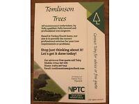 Tomlinson Trees