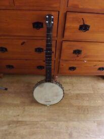 Antique 5 string banjo
