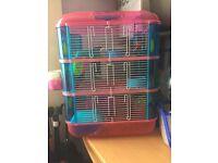 Russian dwarf hamster + 3 floor cage