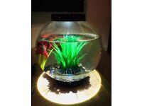 Baby BioOrb 15l Cold Water FishTank