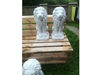 Pair of solid concrete Lion Statues 45cm tall