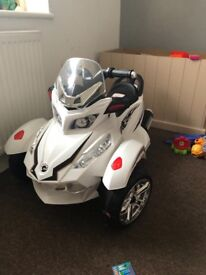 Brand new electric trike