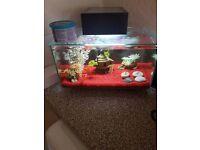 Fish tank nd accessories