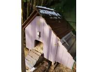Chicken coop, chickens and extras