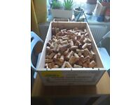 BARGAIN!! WINE AND CHAMPAGNE CORKS FOR SALE